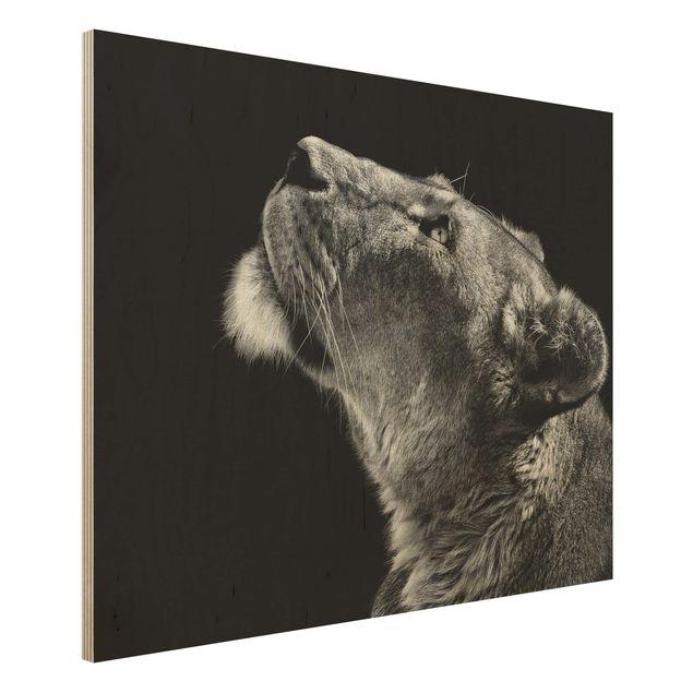 Holzbild - Portrait einer Löwin - Querformat 3:4