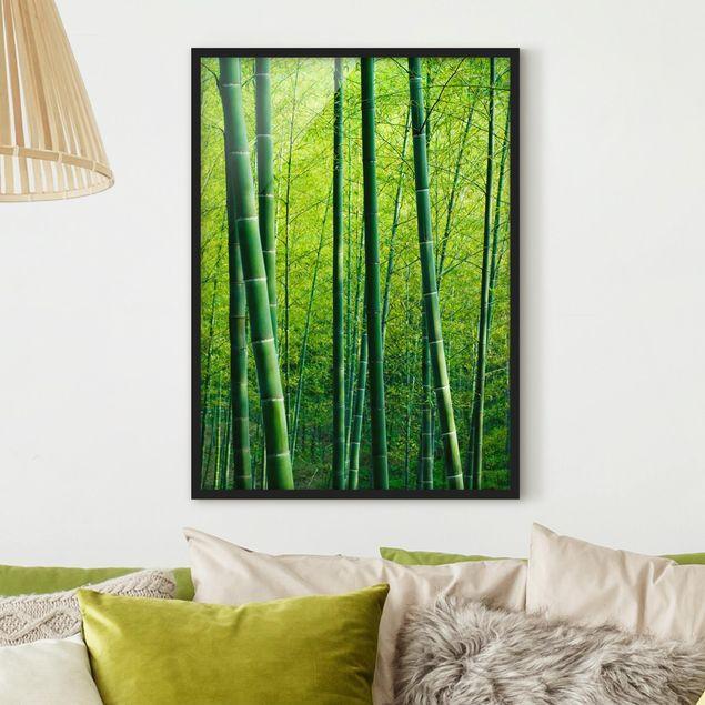 Bild mit Rahmen - Bambuswald - Hochformat 3:4