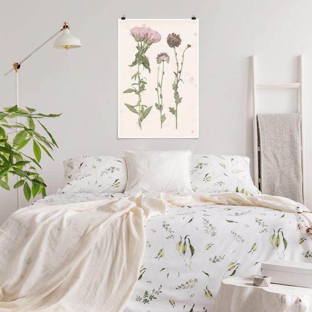 Poster - Herbarium in rosa III - Hochformat 3:2