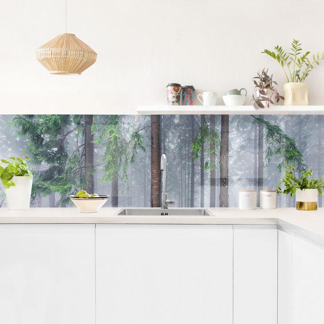 Küchenrückwand - Nadelbäume im Winter