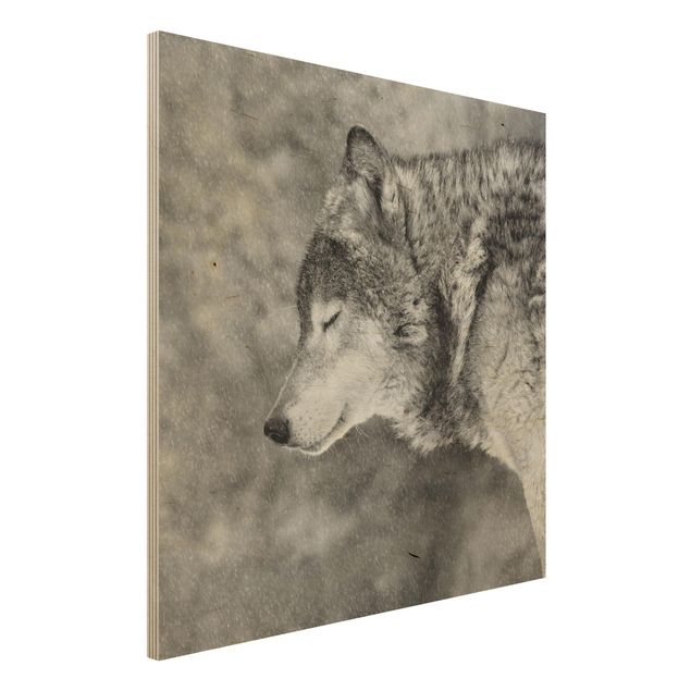 Holzbild - Winter Wolf - Quadrat 1:1