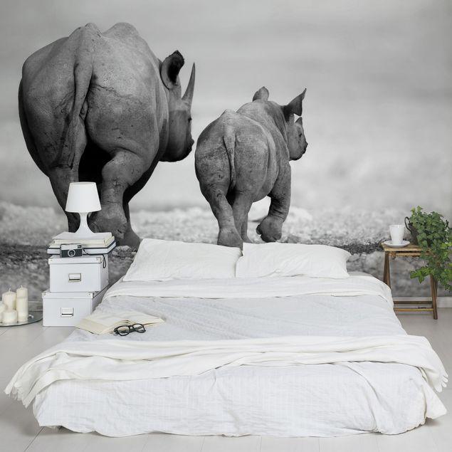 Fototapete Wandering Rhinos II