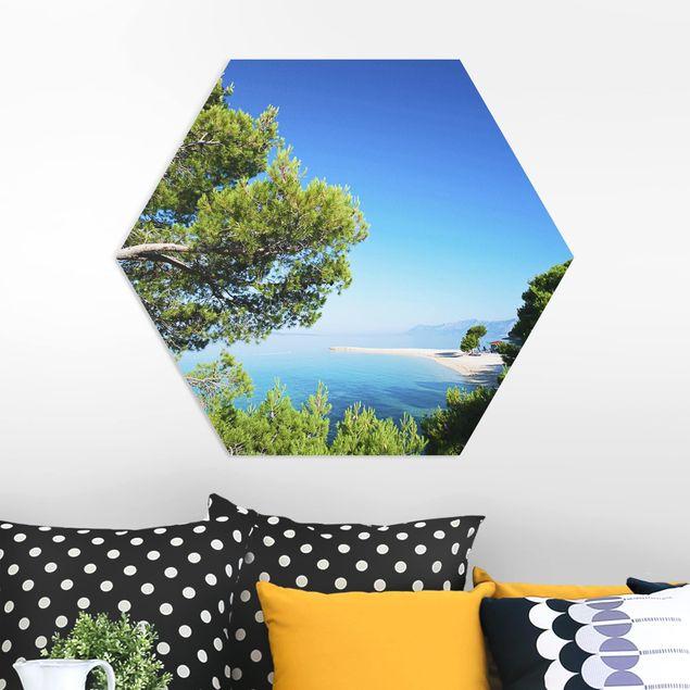 Hexagon Bild Forex - Hidden Paradise