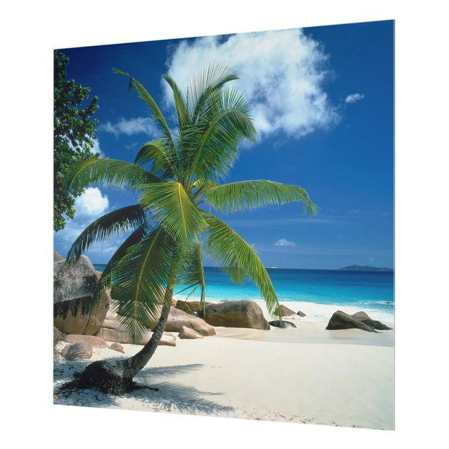 Glas Spritzschutz - Traumstrand Seychellen - Quadrat - 1:1