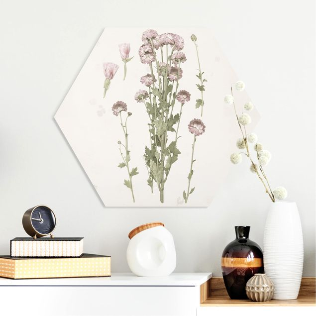 Hexagon Bild Forex - Herbarium in rosa I