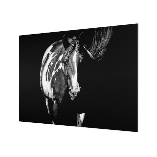 Glas Spritzschutz - Pferd vor Schwarz - Querformat - 4:3
