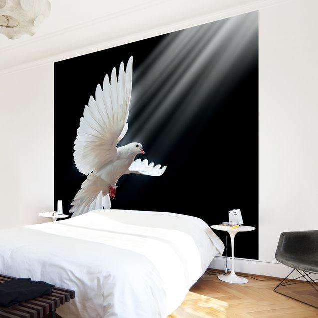 Fototapete Holy Dove