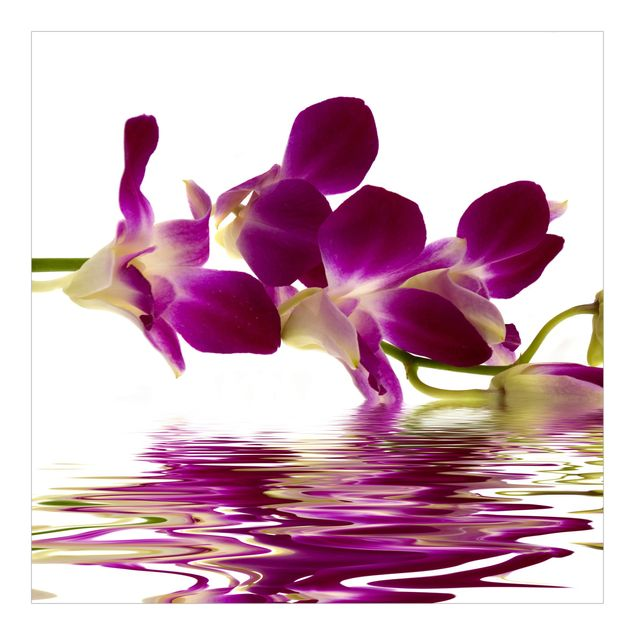 Fototapete Pink Orchid Waters