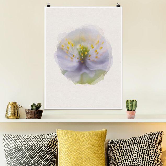 Poster - Wasserfarben - Anemonen Schönheit - Hochformat 4:3
