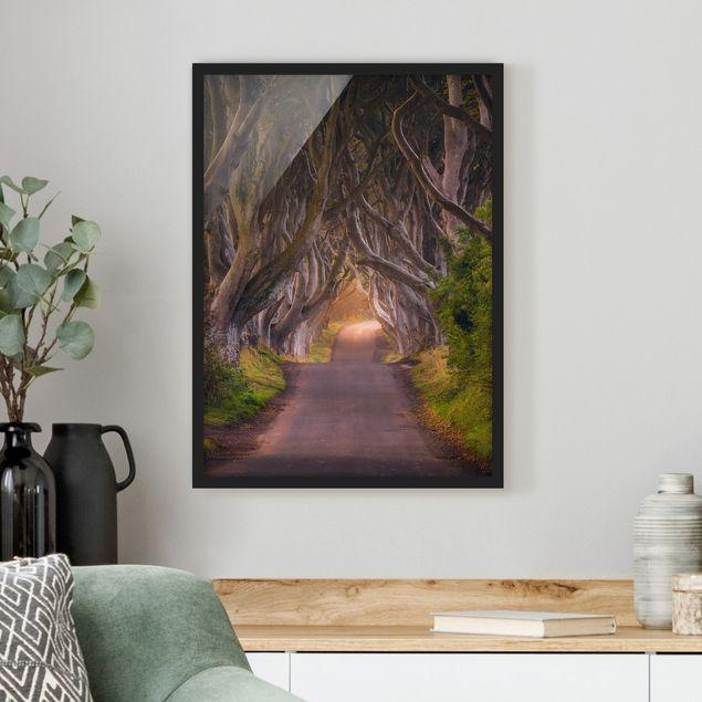 Bild mit Rahmen - Tunnel aus Bäumen - Hochformat 3:4