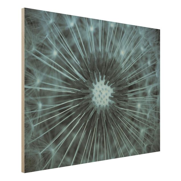 Holzbild - Blau getönte Pusteblume - Querformat 3:4