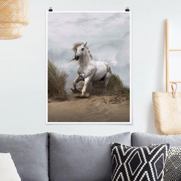 Poster - Weißes Pferd in den Dünen - Hochformat 3:4