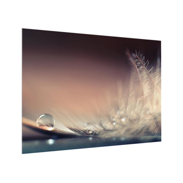Glas Spritzschutz - Story of a Waterdrop - Querformat - 4:3
