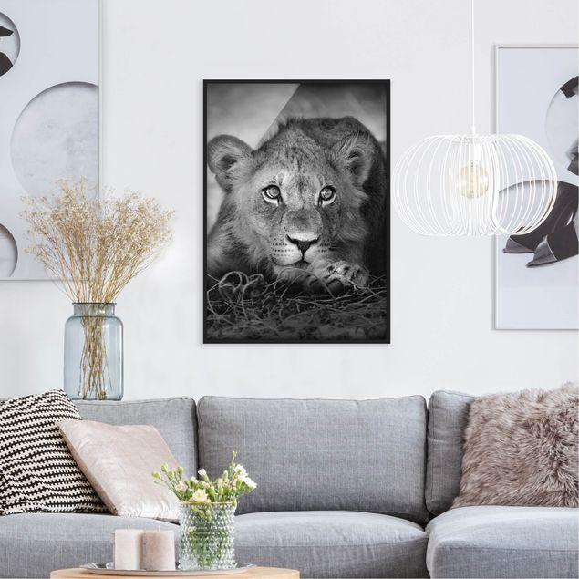 Bild mit Rahmen - Lurking Lionbaby - Hochformat 3:4