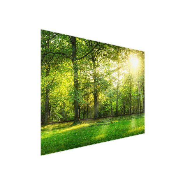 Glasbild - Spaziergang im Wald - Querformat 4:3