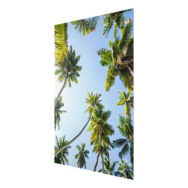 Glasbild - Palmen Himmel - Hochformat 3:4