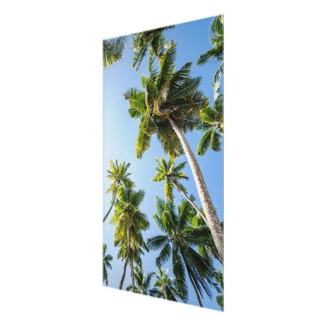 Glasbild - Palmen Himmel - Hochformat 2:3