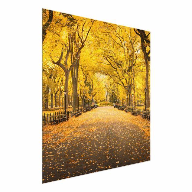 Glasbild - Herbst im Central Park - Quadrat 1:1