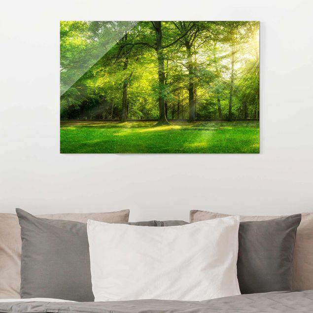 Glasbild - Spaziergang im Wald - Querformat 3:2