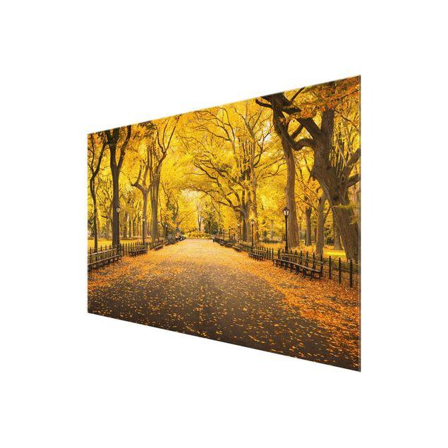 Glasbild - Herbst im Central Park - Querformat 3:2