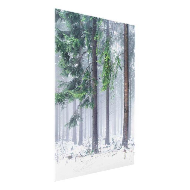 Glasbild - Nadelbäume im Winter - Hochformat 3:4