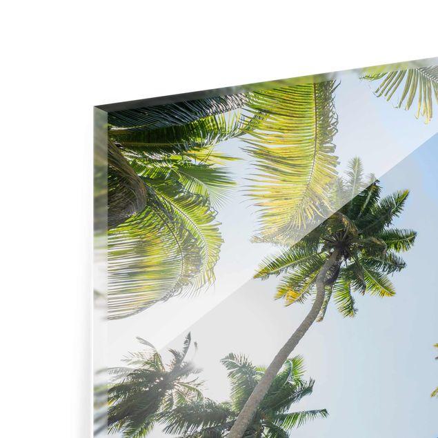 Glasbild - Palmen Himmel - Querformat 4:3