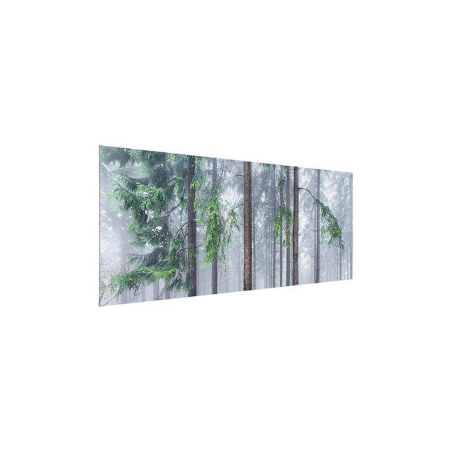 Glasbild - Nadelbäume im Winter - Panorama
