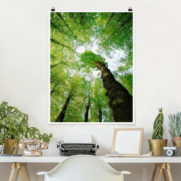 Poster - Bäume des Lebens - Hochformat 3:4