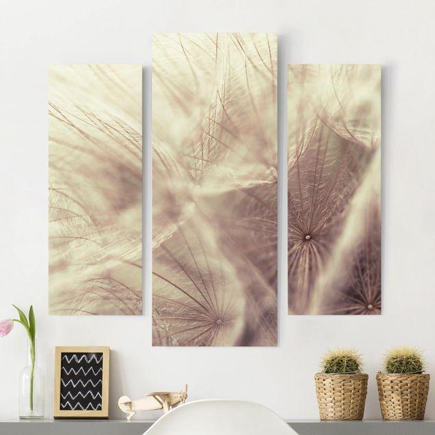Leinwandbild 3-teilig - Detailreiche Pusteblumen Makroaufnahme mit Vintage Blur Effekt - Galerie Triptychon