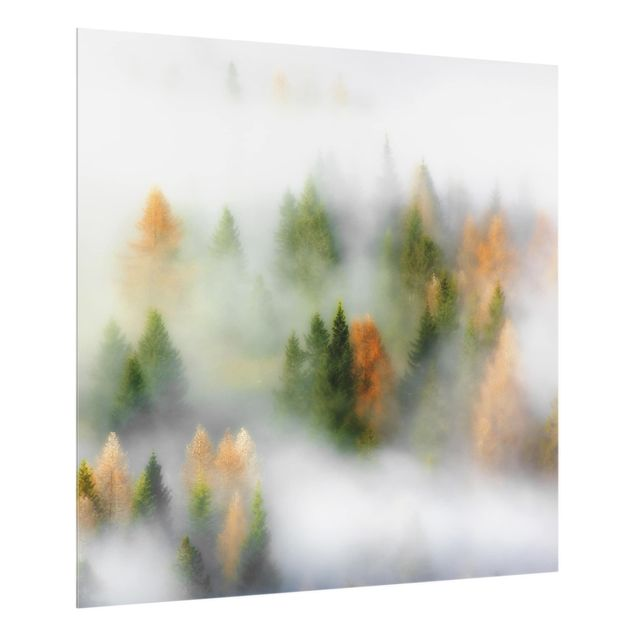 Glas Spritzschutz - Nebelwald im Herbst - Quadrat - 1:1
