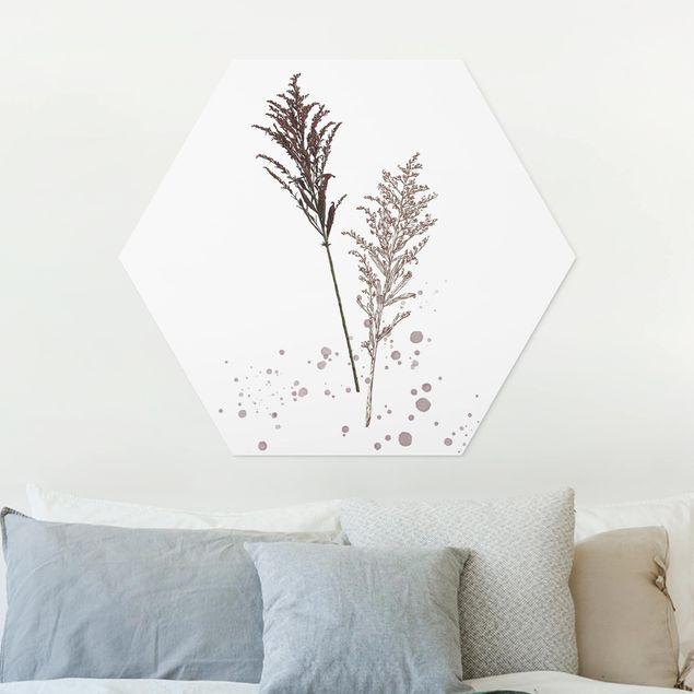 Hexagon Bild Forex - Botanisches Aquarell - Schwingelschilf