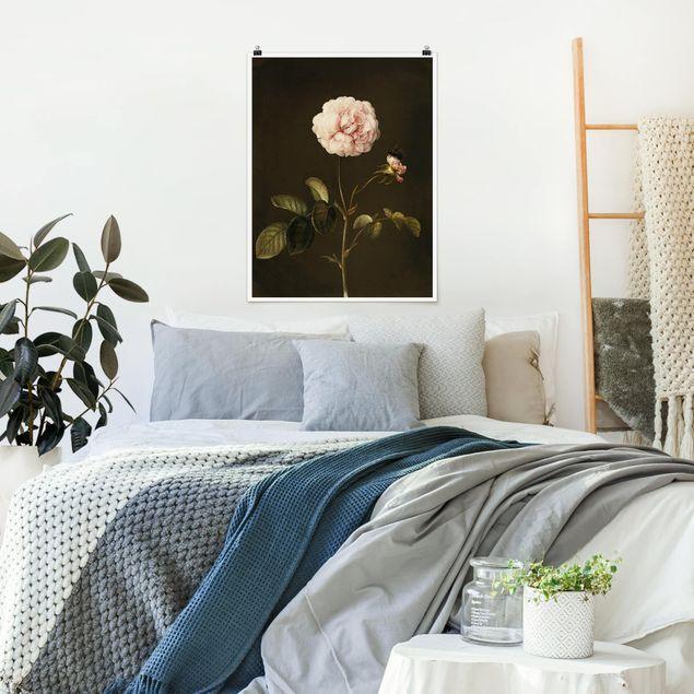 Poster - Barbara Regina Dietzsch - Essig-Rose mit Hummel - Hochformat 3:4