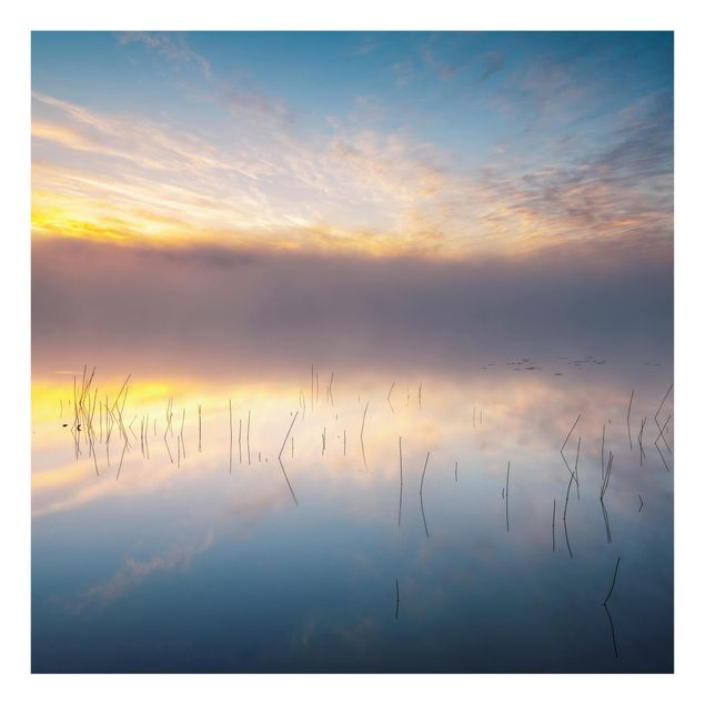 Glas Spritzschutz - Sonnenaufgang schwedischer See - Quadrat - 1:1