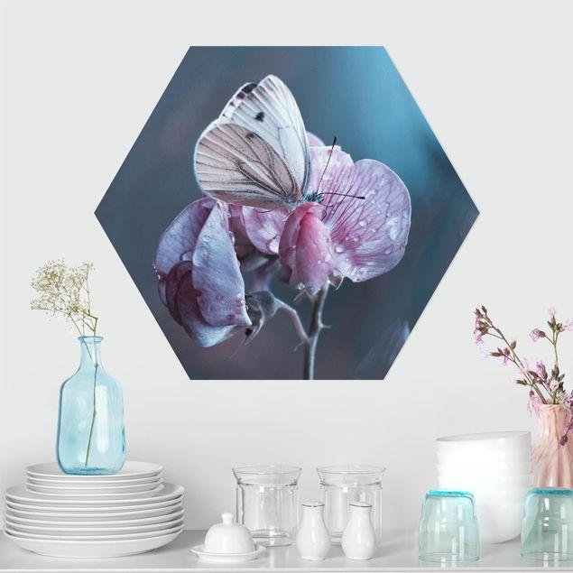 Hexagon Bild Alu-Dibond - Schmetterling im Regen