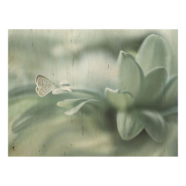 Holzbild - Schmetterling und Tautropfen in Pastellgrün - Querformat 3:4
