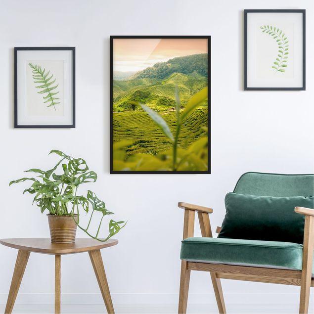 Bild mit Rahmen - Teagarden - Hochformat 3:4