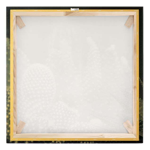 Leinwandbild Gold - Kakteenfamilie bei Nacht - Quadrat 1:1