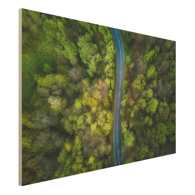 Holzbild - Luftbild - Asphaltstraße im Wald - Querformat 2:3