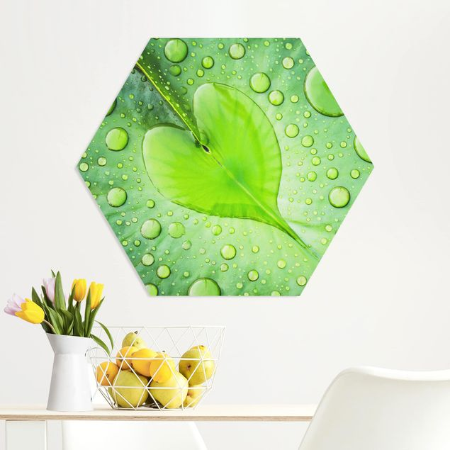 Hexagon Bild Forex - Herz aus Morgentau