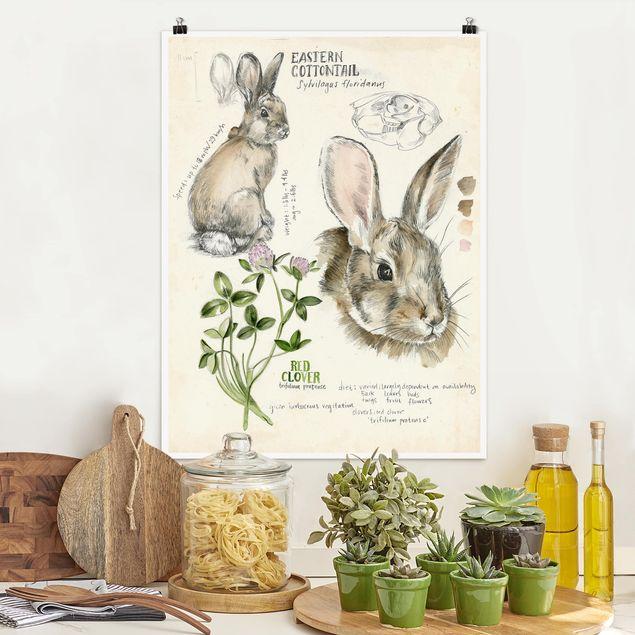 Poster - Wildnis Journal - Kaninchen - Hochformat 3:4