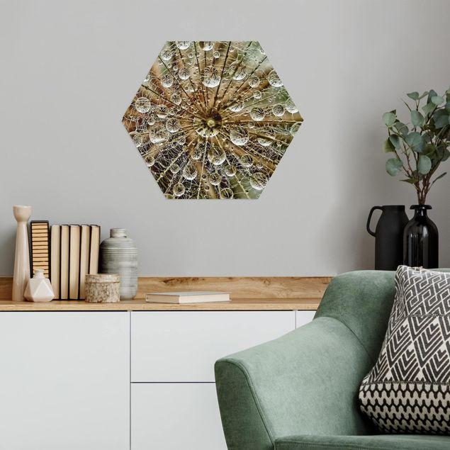 Hexagon Bild Alu-Dibond - Pusteblume im Herbst