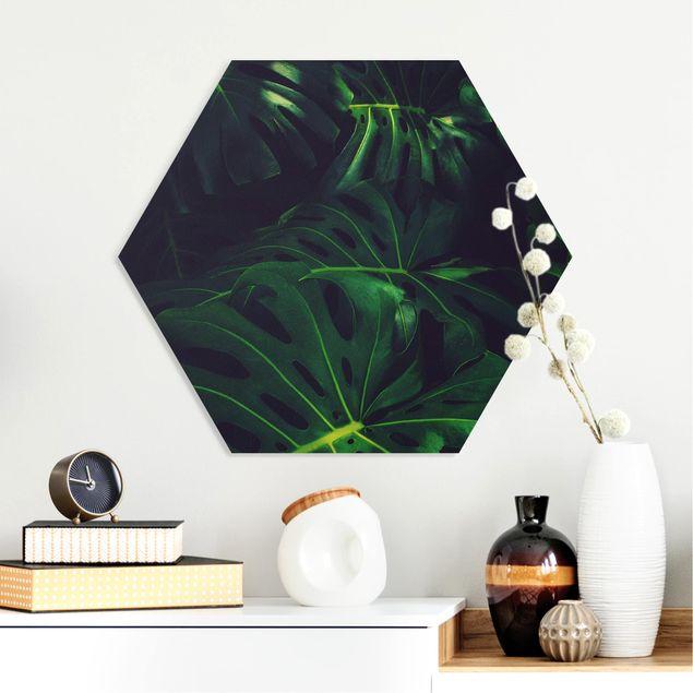Hexagon Bild Forex - Monsteradschungel