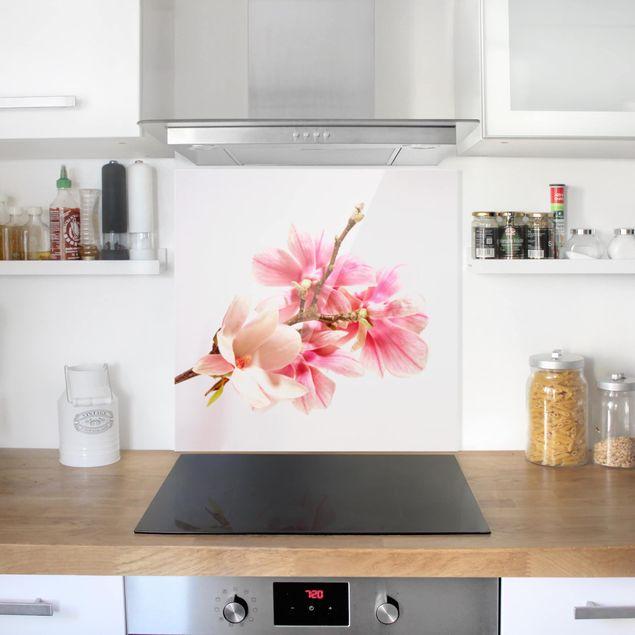 Glas Spritzschutz - Magnolienblüten - Quadrat - 1:1