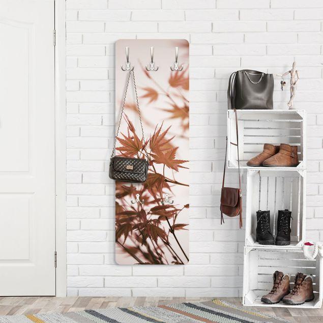 Garderobe - Ahornblätter in Herbstsonne