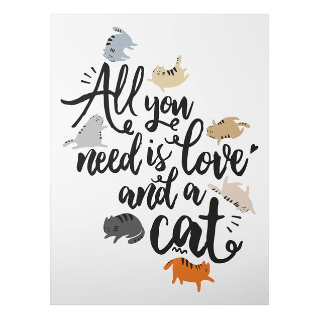 Alu-Dibond Bild - All you need is love and a cat