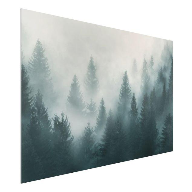 Alu-Dibond Bild - Nadelwald im Nebel