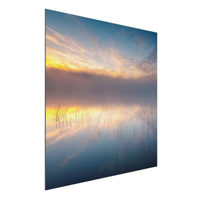 Aluminium Print - Sonnenaufgang schwedischer See - Quadrat 1:1