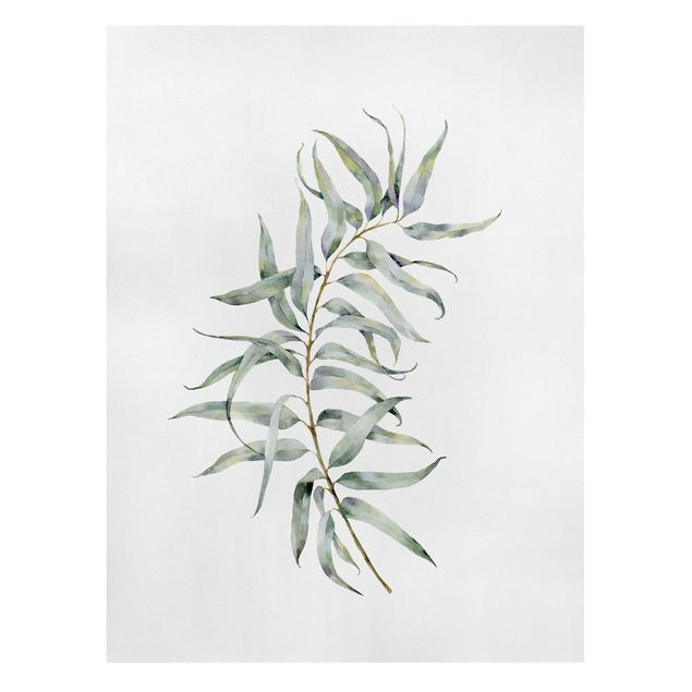 Leinwandbild - Aquarell Eucalyptus IV - Hochformat 3:4