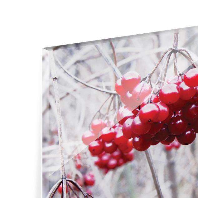 Glas Spritzschutz - No.CA42 Waldfrüchte - Querformat - 4:3