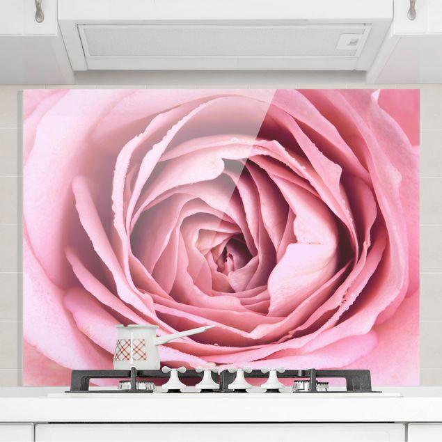 Spritzschutz Glas - Rosa Rosenblüte - Querformat 3:4